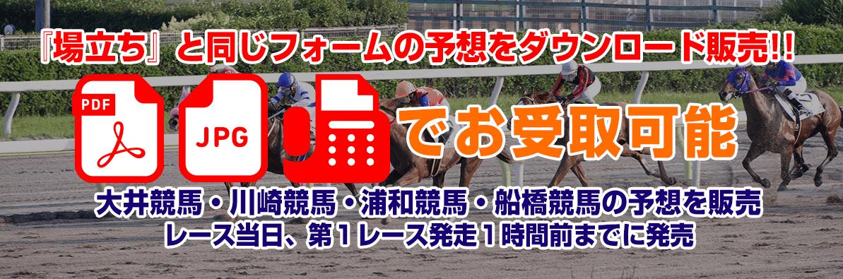ホースレースリサーチ東京 情報販売
