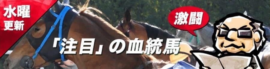 「注目」の血統馬
