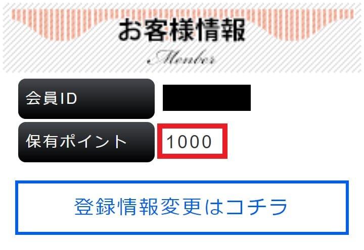 保有ポイント:1000