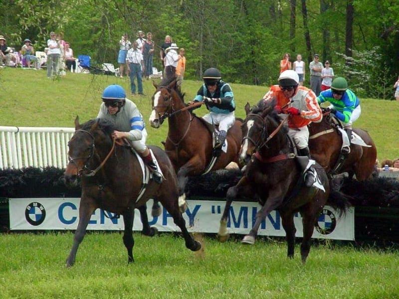 競馬 障害レース