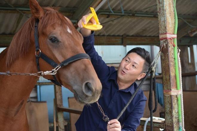調教師 競走馬