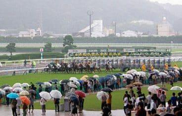 競馬 雨 予想