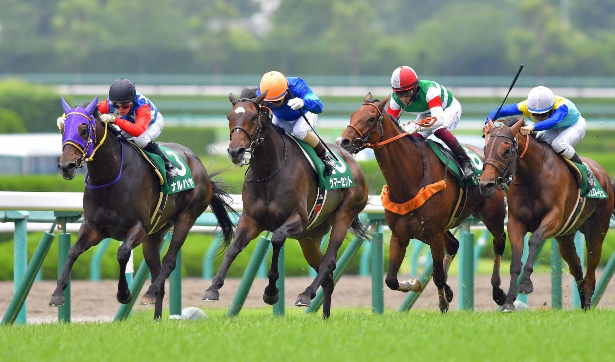 日本の競馬
