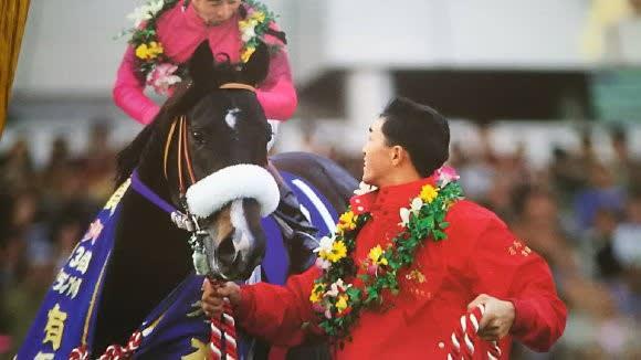 ナリタブライアン シャドーロール 有馬記念