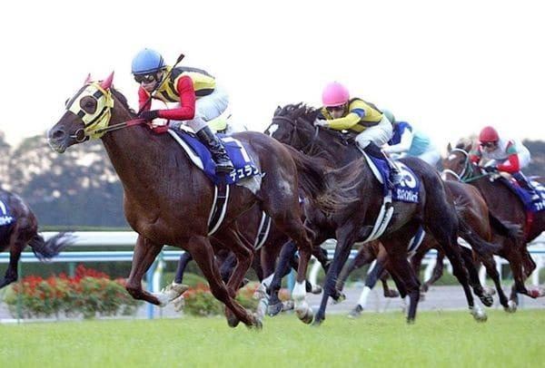 競馬 追い込み馬