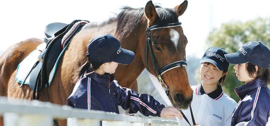 ただ馬の世話をするだけじゃない厩務員