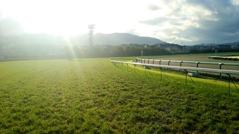 海外の馬場状態