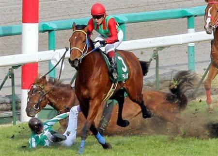 競走馬の怪我・骨折に安楽死が多い理由